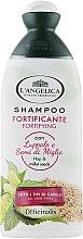 Духи, Парфюмерия, косметика Укрепляющий шампунь для всех типов волос - L'Angelica Officinalis Shampoo Fortyfing for All Types of Hair