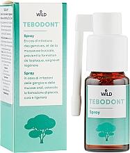 Духи, Парфюмерия, косметика Спрей с маслом чайного дерева - Dr. Wild Tebodont