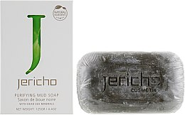 Духи, Парфюмерия, косметика Очищающее грязевое мыло с минералами Мертвого моря - Jericho Purifying Mud Soap