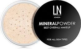 Духи, Парфюмерия, косметика Рассыпчатая пудра для лица - LN Professional Mineral Powder Best Overall Makeup