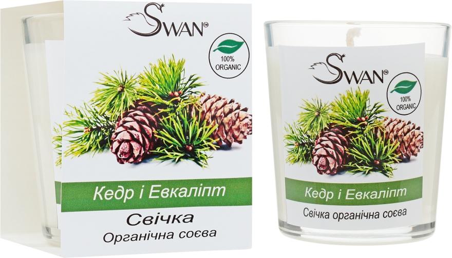 """Органическая соевая свеча """"Кедр и Эвкалипт"""" - Swan"""