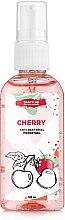 """Антибактериальный гель для рук """"Cherry"""" - SHAKYLAB Anti-Bacterial Pocket Gel — фото N3"""
