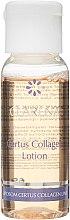 Дорожный мини-набор - Clarena Liposome Certus Collagen Mini Set (lot/30ml + cr/15ml) — фото N3