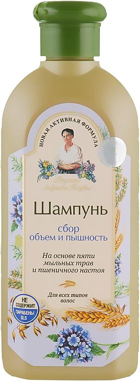 Шампунь Сбор Объем и Пышность - Рецепты бабушки Агафьи