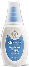 Духи, Парфюмерия, косметика Breeze Deo 24h Vapo - Дезодорант-спрей для тела