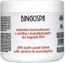 Духи, Парфюмерия, косметика Соль для ванн с экстрактом арники и эвкалиптом - BingoSpa Brine Mud With Arnica And Eucalyptus