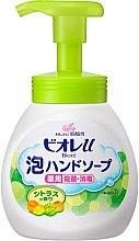 Духи, Парфюмерия, косметика Жидкое мыло-пенка для рук с антибактериальным эффектом - Kao Biore Hand Soap Foam