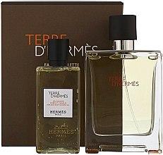 Духи, Парфюмерия, косметика Hermes Terre dHermes - Набор (edt/100ml + sh/g/80ml)