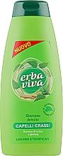 Духи, Парфюмерия, косметика Шампунь для жирных волос с экстрактами женьшеня и крапивы - Erba Viva Hair Shampoo