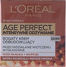 Духи, Парфюмерия, косметика Дневной крем для лица - L'Oreal Paris Age Perfect Intensive Nutrition 60+ Regenerating Day Cream