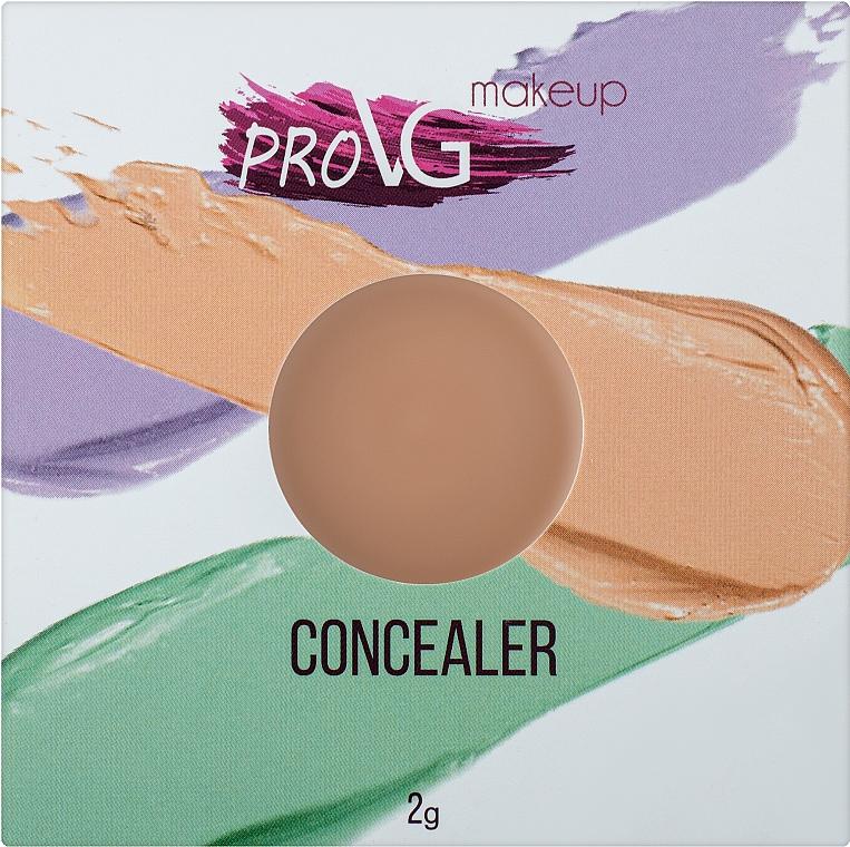 Консилер-корректор для лица - PROVG Concealer