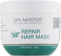 Духи, Парфюмерия, косметика Восстанавливающая маска для волос с аргановым маслом - Spa Master