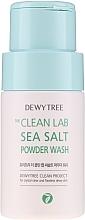 Духи, Парфюмерия, косметика Пудра для умывания с морской солью - Dewytree The Clean Lab Sea Salt Powder Wash