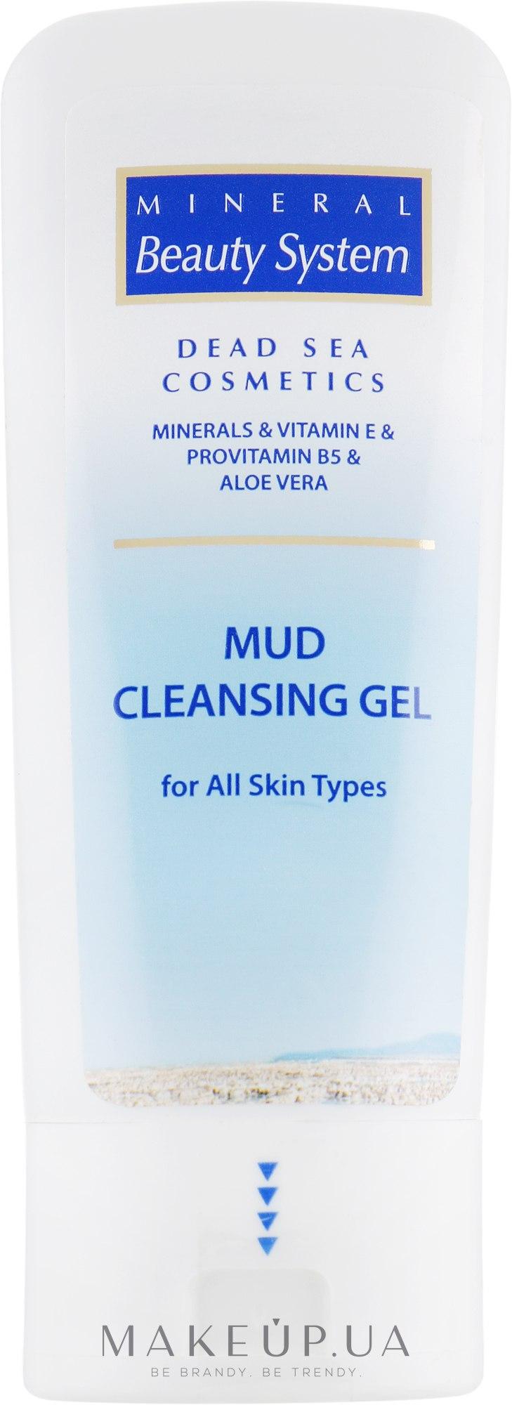 Грязевой очищающий гель - Mineral Beauty System Mud Cleansing Gel — фото 100ml
