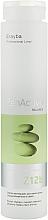 Духи, Парфюмерия, косметика Шампунь для жирных волос - Erayba Z12b Cleansing Shampoo