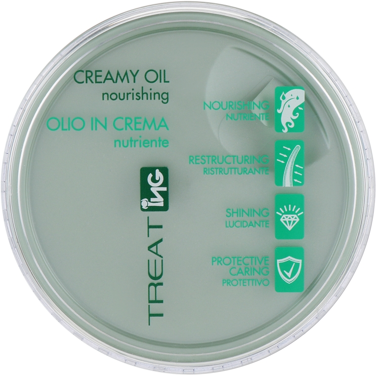 Питательное крем-масло для волос - NG Professional Treat Creamy Oil Nourishing