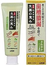 Духи, Парфюмерия, косметика Зубная паста для профилактики болезней десен с мягким травяным ароматом - Lion Hitech