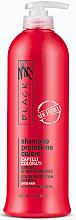 Духи, Парфюмерия, косметика Шампунь для защиты цвета с экстрактом подсолнечника - Black Professional Line Colour Protection Shampoo