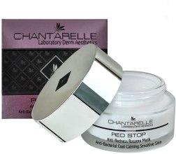 Охлаждающая антибактериальная маска - Chantarelle Anti-Redness Anti-Bacterial Rosacea Mask — фото N2