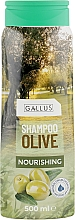 "Духи, Парфюмерия, косметика Шампунь для волос ""Олива"" - Gallus Olive Shampoo"