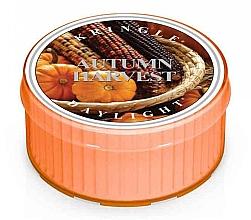 Духи, Парфюмерия, косметика Чайная свеча - Kringle Candle Autumn Harvest Daylight