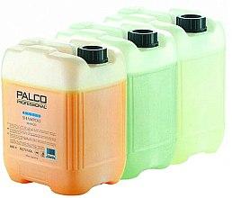 "Духи, Парфюмерия, косметика Шампунь для волос ""Манго"" - Palco Professional Basic Shampoo"