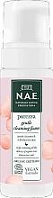 Духи, Парфюмерия, косметика Очищающая пенка для лица - N.A.E. Purezza Gentle Cleansing Foam