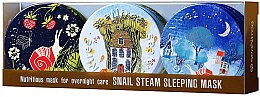 Духи, Парфюмерия, косметика Набор - SeaNtree Snail Steam Sleeping Mask Set 4 (f/mask/3x35g)