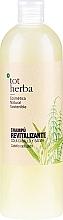 Духи, Парфюмерия, косметика Восстанавливающий шампунь экстрактом хвоща и шалфея - Tot Herba Horsetail & Sage Repair Shampoo