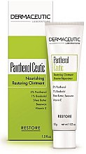 Духи, Парфюмерия, косметика Питательный восстанавливающий бальзам для лица - Dermaceutic Laboratoire Restore Panthenol Ceutic