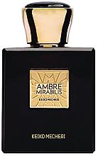 Духи, Парфюмерия, косметика Keiko Mecheri Bespoke Ambre Mirabilis - Парфюмированная вода (тестер без крышечки)
