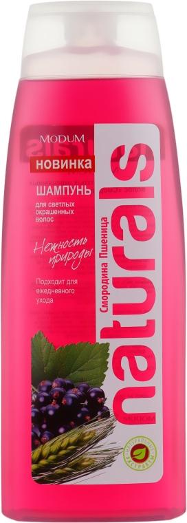 """Шампунь для светлых окрашенных волос """"Смородина. Пшеница"""" - Modum Naturals Shampoo"""