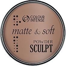 Духи, Парфюмерия, косметика Пудра-скульптор для лица - Colour Intense Sculpting Matte Finish Pressed Powder