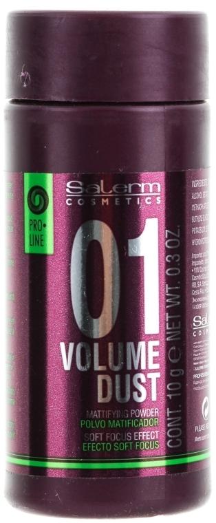 Пудра для придания волосам объема и плотности - Salerm Pro Line Volume Dust 01 Mattifying Powder