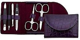 Духи, Парфюмерия, косметика Маникюрный набор для ногтей - DuKaS Premium Line PL 213FL