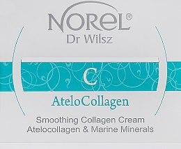 Духи, Парфюмерия, косметика Разглаживающий морщины крем с коллагеном - Norel AteloCollagen Smoothing Collagen Cream