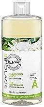 Духи, Парфюмерия, косметика Очищающий шампунь для волос - Biolage R.A.W. Fresh Recipes Cleansing Juice Base