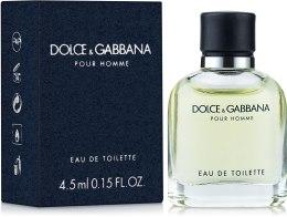 Духи, Парфюмерия, косметика Dolce&Gabbana Pour Homme - Туалетная вода (мини)