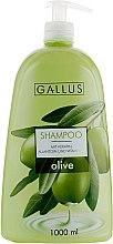 Духи, Парфюмерия, косметика Шампунь с экстрактом оливы - Gallus Olive Shampoo