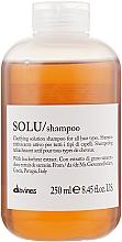 Духи, Парфюмерия, косметика Активно освежающий шампунь для глубокого очищения волос - Davines Solu Shampoo