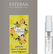Духи, Парфюмерия, косметика Парфюмированный аромат для дома - Esteban Terre D'Agrumes Home Fragrance (пробник)