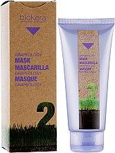 Духи, Парфюмерия, косметика Маска с маслом виноградной косточки - Salerm Biokera Grapeology Mask
