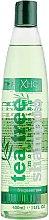 Духи, Парфюмерия, косметика Шампунь для волос - Xpel Marketing Ltd Tea Tree Shampoo