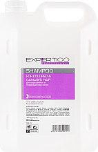 Шампунь для окрашенных и поврежденных волос - Tico Professional For Colored&Damaged Hair — фото N3