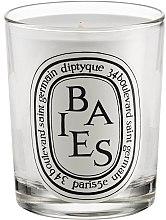 Духи, Парфюмерия, косметика Ароматическая свеча - Diptyque Baies Candle
