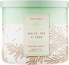 """Духи, Парфюмерия, косметика Аромасвеча """"White Tea & Sage"""" - Bath and Body Works"""