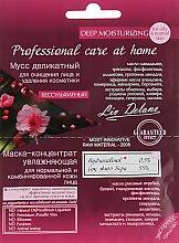 Духи, Парфюмерия, косметика Маска-концентрат увлажняющая кожи лица + Мусс деликатный - Liv Delano Professional Care Art Home