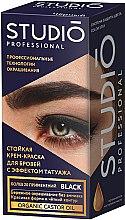 Духи, Парфюмерия, косметика Стойкая крем-краска для бровей и ресниц - Studio Professional Color Stay