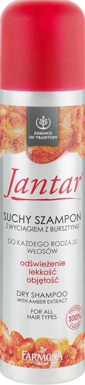 "Сухой шампунь ""Амбра"" - Farmona Jantar — фото N1"