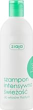 """Духи, Парфюмерия, косметика Шампунь освежающий для жирных волос """"Мята"""" - Ziaja Shampoo"""